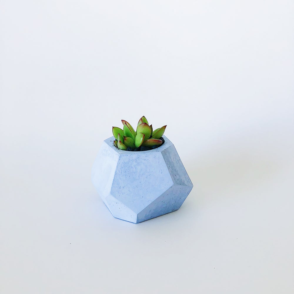 Image of Planter - Pebbles [Pastel Blue)
