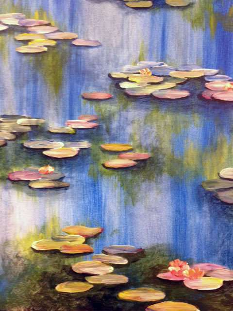 Image of Waterlillies! Friday 9 AUGUST 7 -9