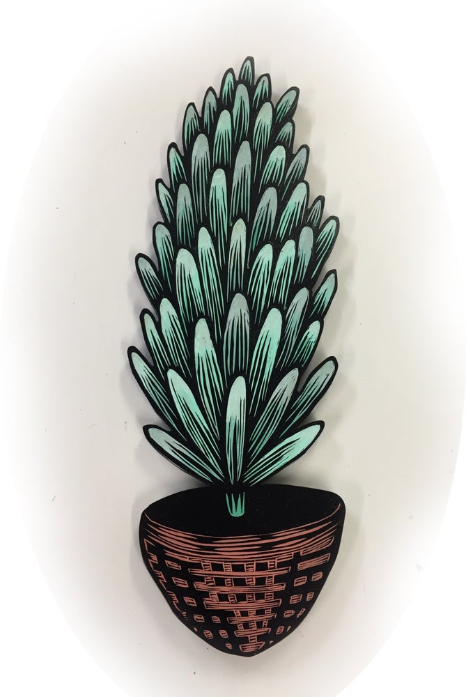 Image of House plant 5
