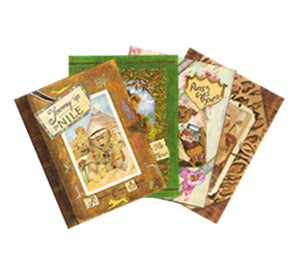 Image of Set of all 4 Books