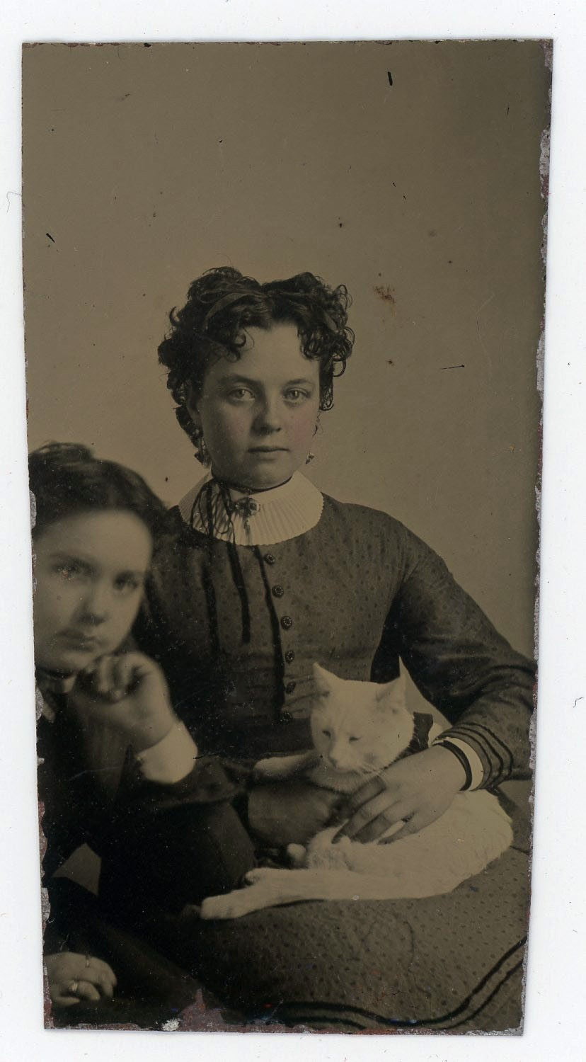 Image of Tintype: young woman and boy with a white cat, ca. 1865