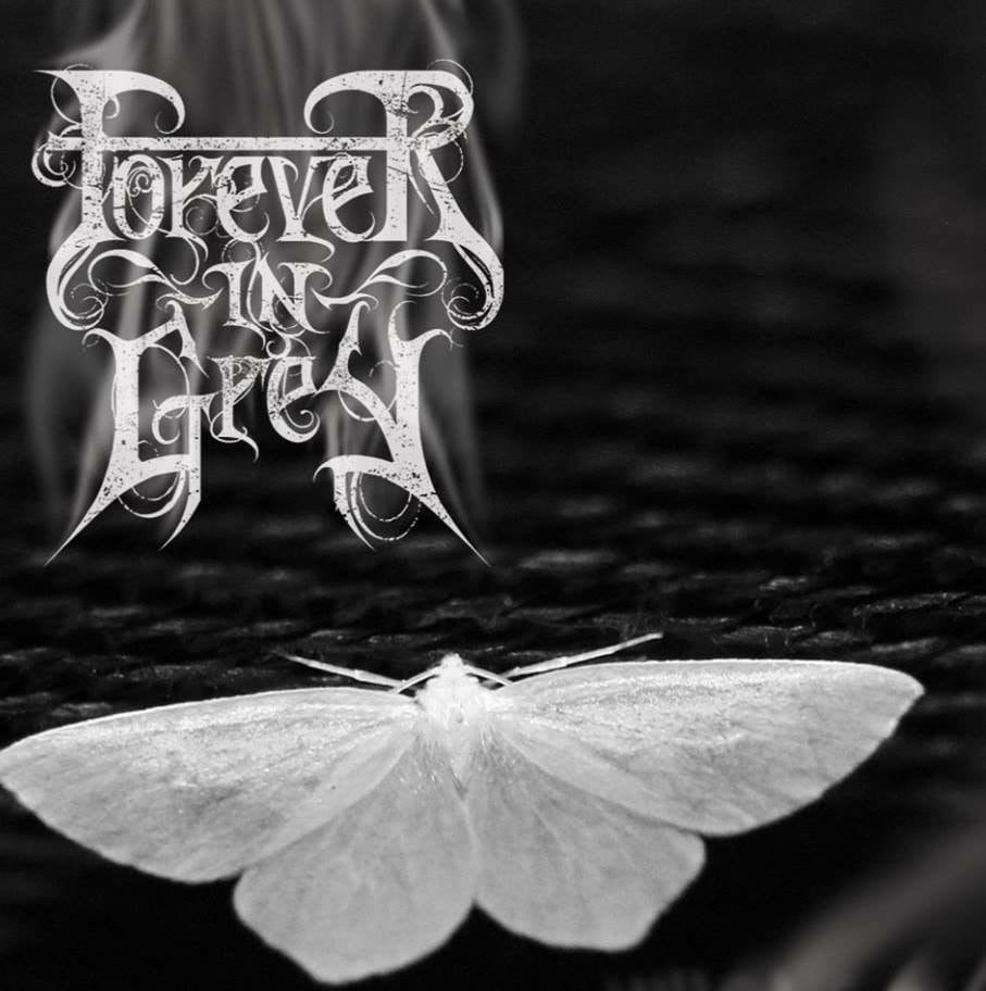 "Image of Forever in Grey ""WIIsagendam"""