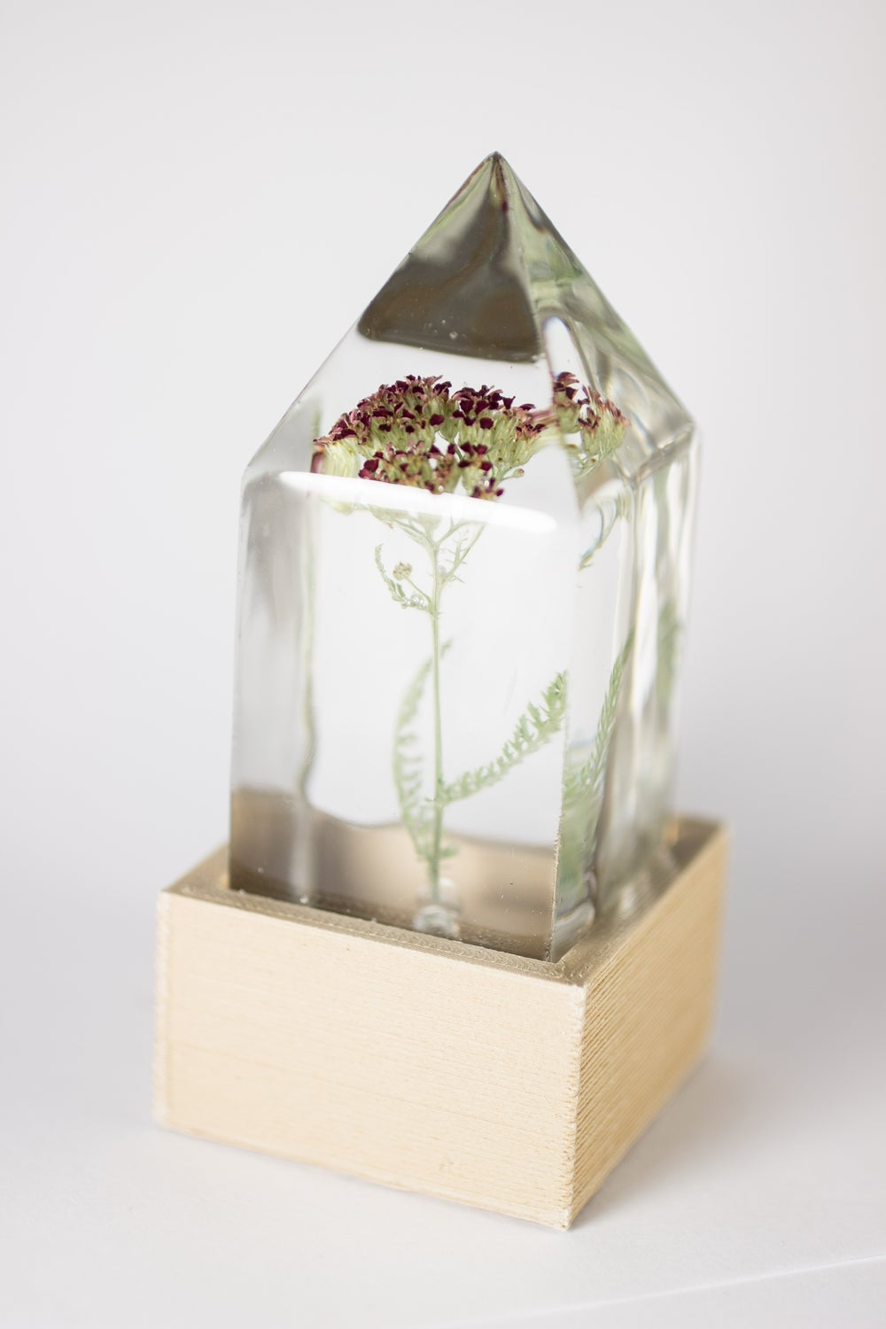 Image of Red Yarrow (Achillea millefolium) - Floral Prism Desk Lamp