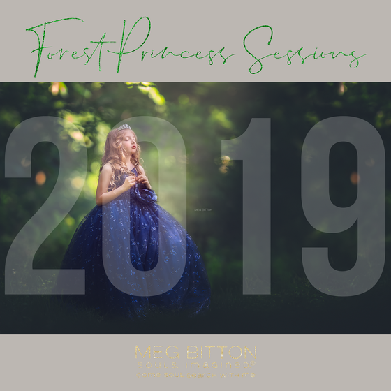 Image of Summer Sessions 2019