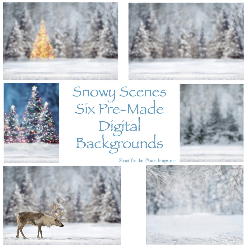 Image of Snowy Scenes Digital Backgrounds