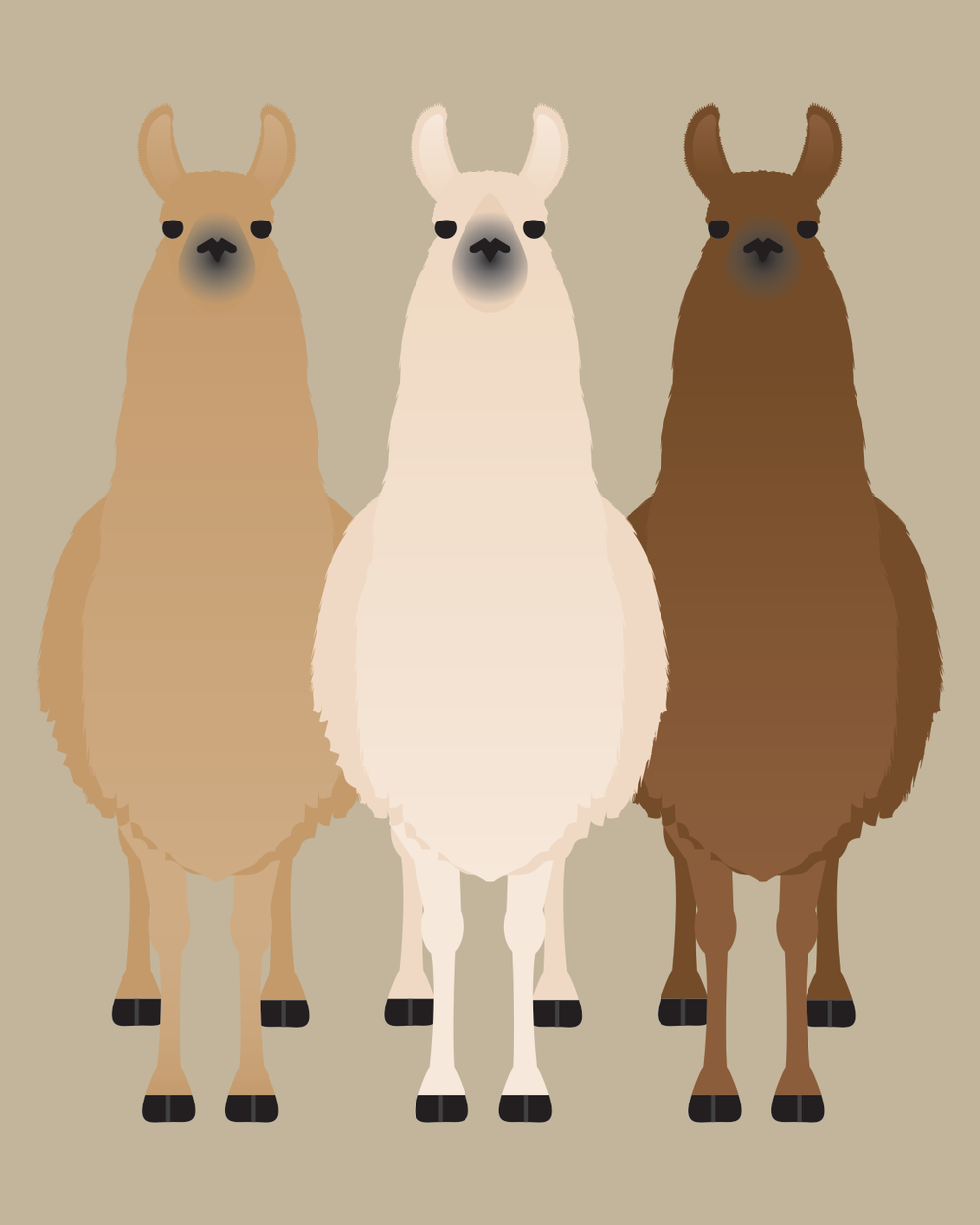 Alpaca and Llama Collection