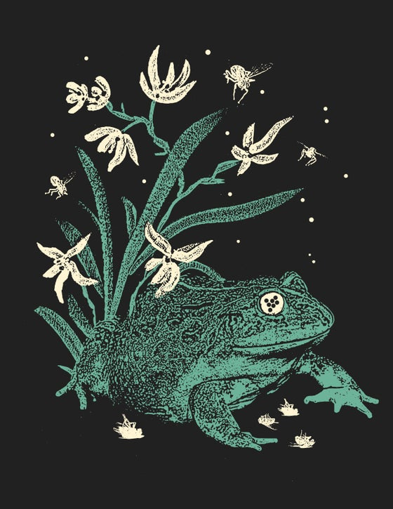 "Image of ""Froggy 101"" Screen Print"