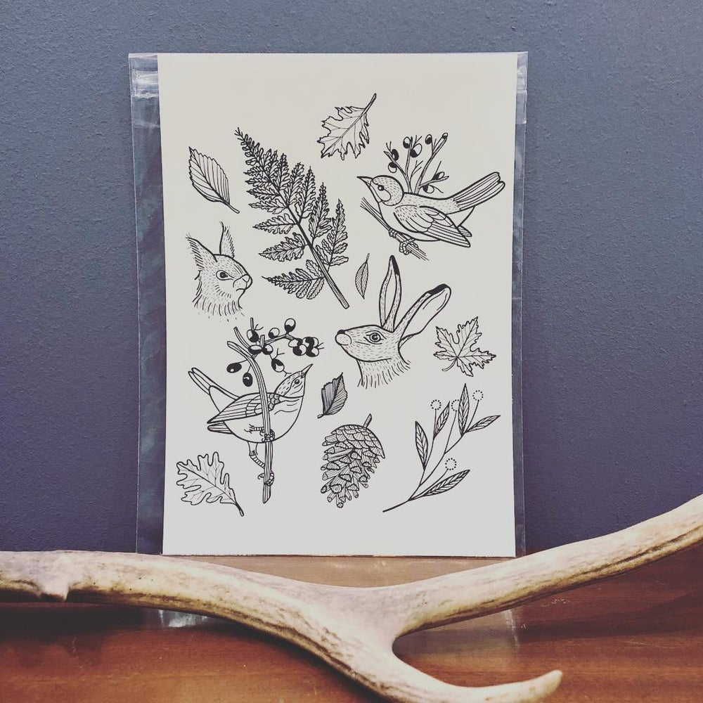 Image of NATURE PRINT