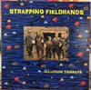 """STRAPPING FIELDHANDS """"Alluvium Trinkets"""" (Omphalos Records)"""