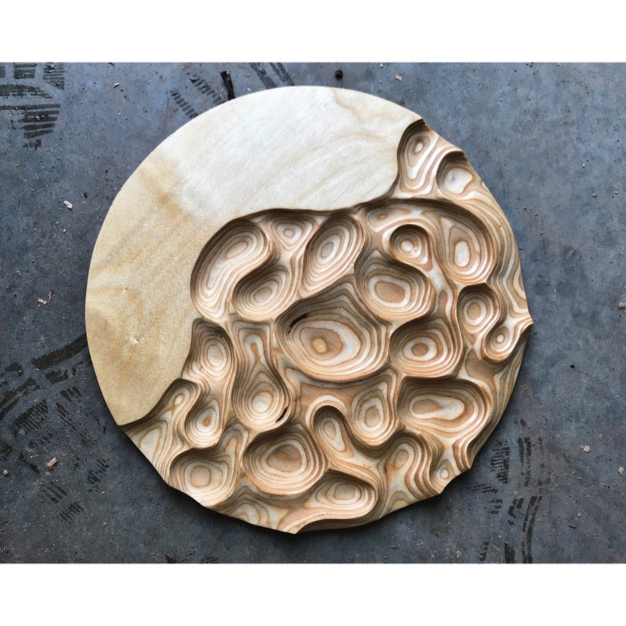 Image of What Lies Beneath. Ply carving