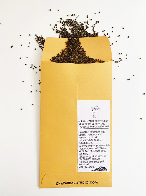 Image of CALIFORNIA NATIVE PATCH+ POPPY SEEDS - WINTER EXCLUSIVE