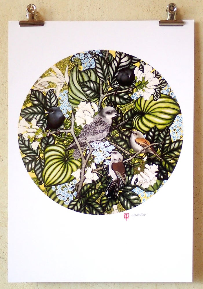 Image of 'Chatham Islands Ecosystem' A3 Print