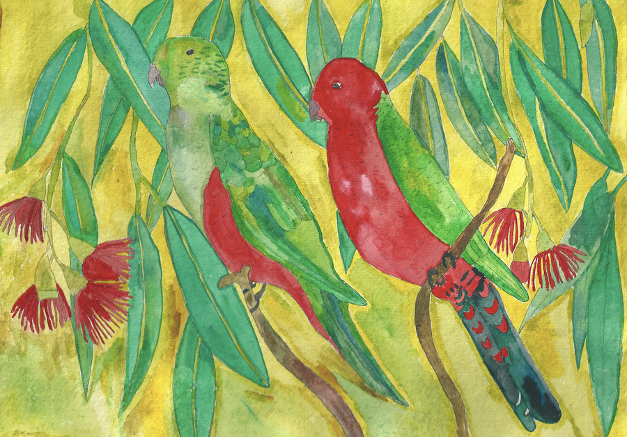 Image of King Parrots - A Greeting Card