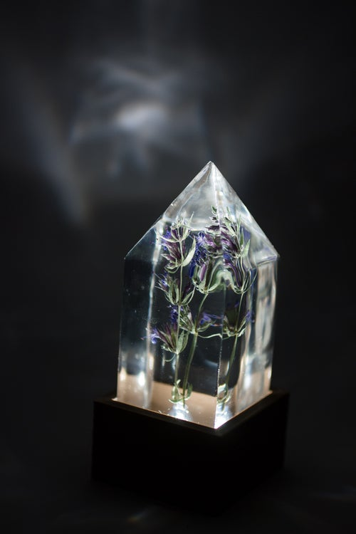 Image of Hyssop (Hyssopus officinalis) - Floral Prism Nightlight