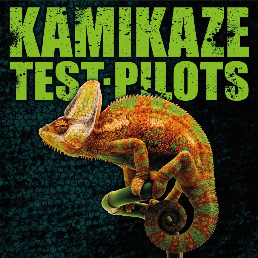 Image of Stealing Chameleons