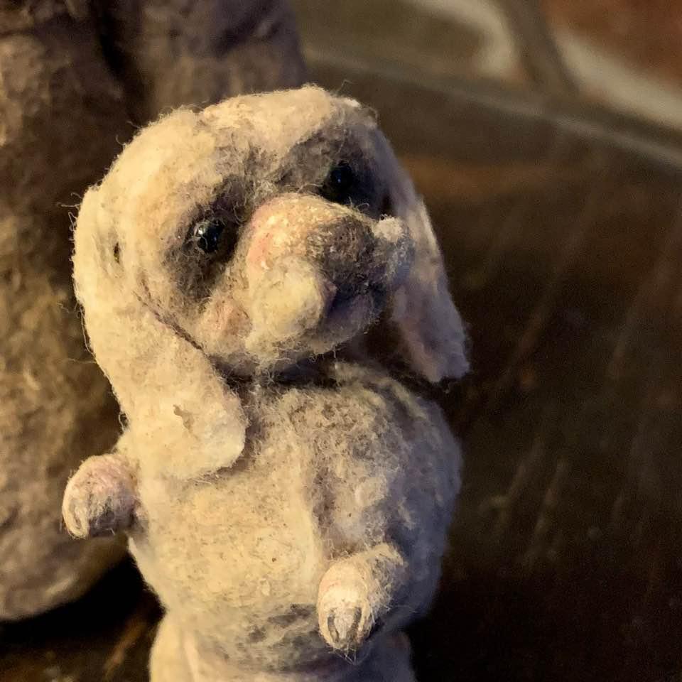 Image of Begging Dog (white)
