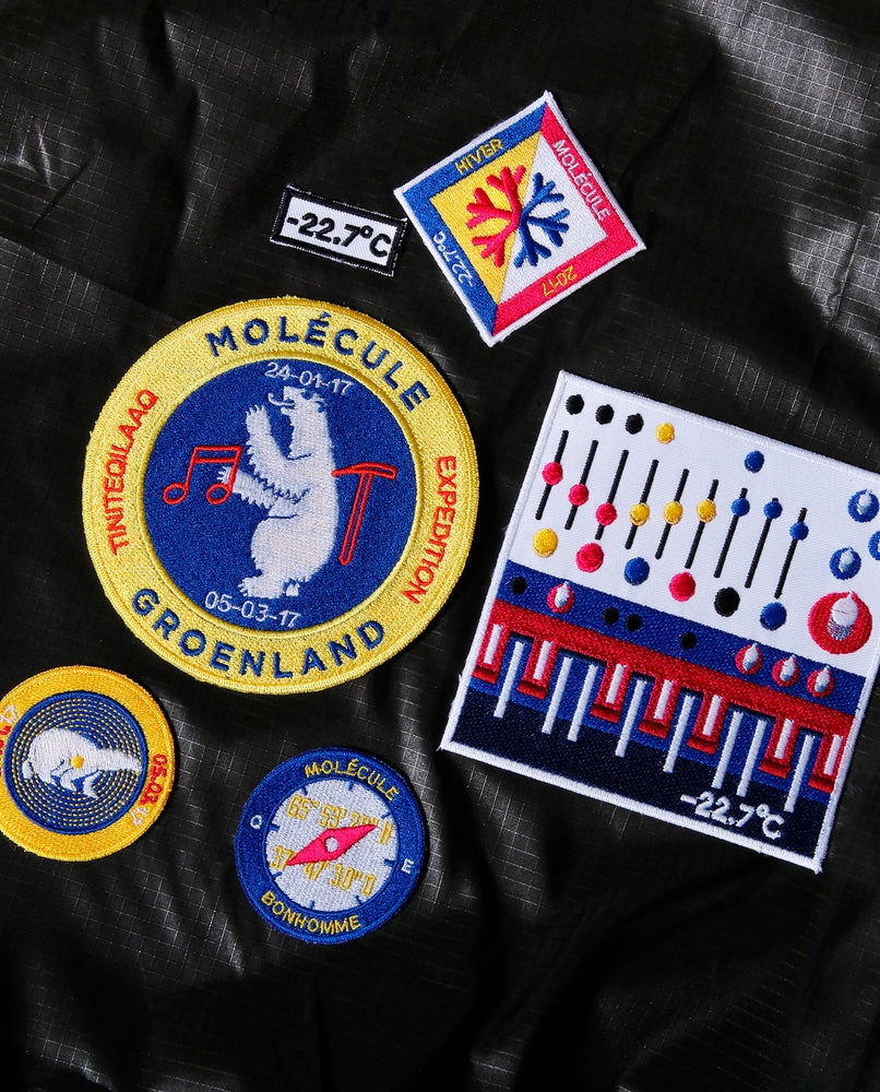 """Image of  Molecule's """"Greenland Expedition Patch"""" by Bonhomme #bear"""