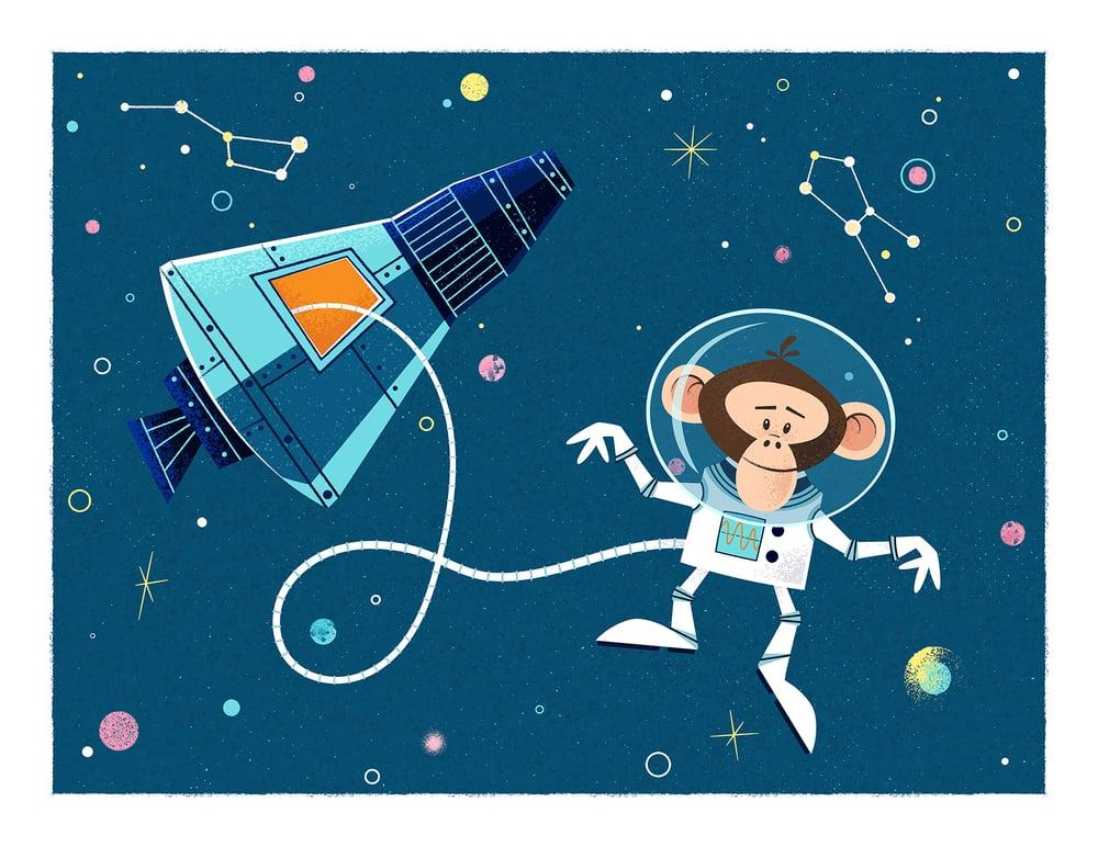 Image of HAM (Astrochimp)