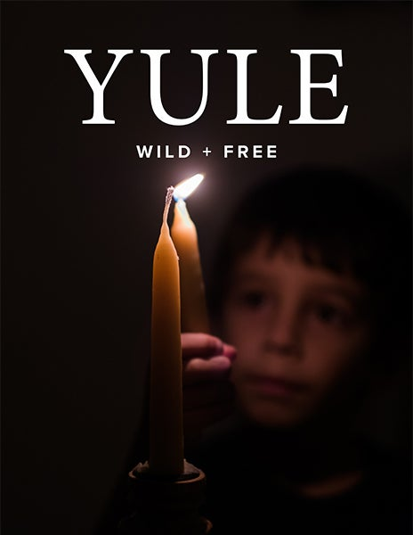 Image of YULE Content Bundle