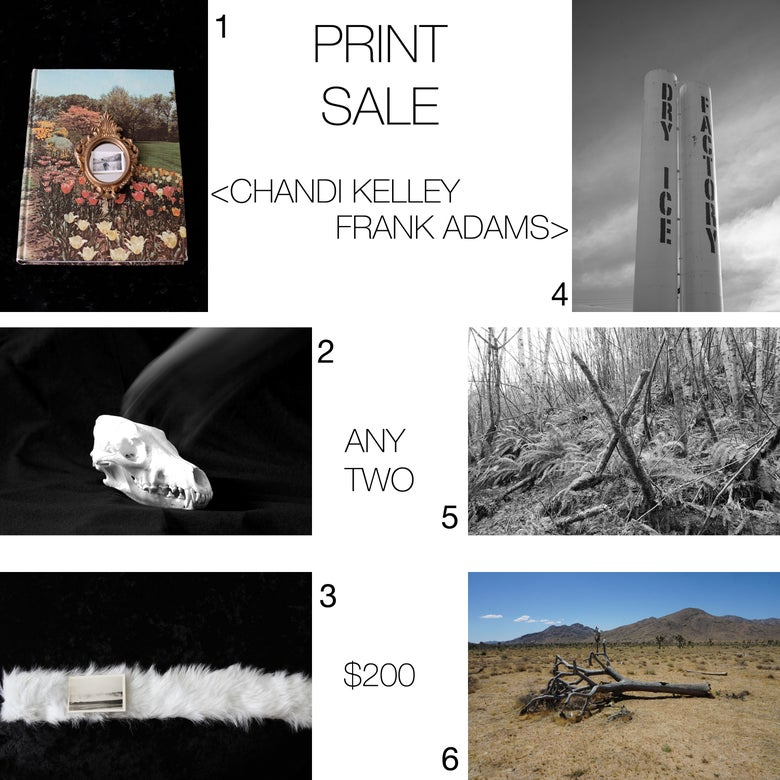 Image of PRINT SALE - Frank Adams and Chandi Kelley