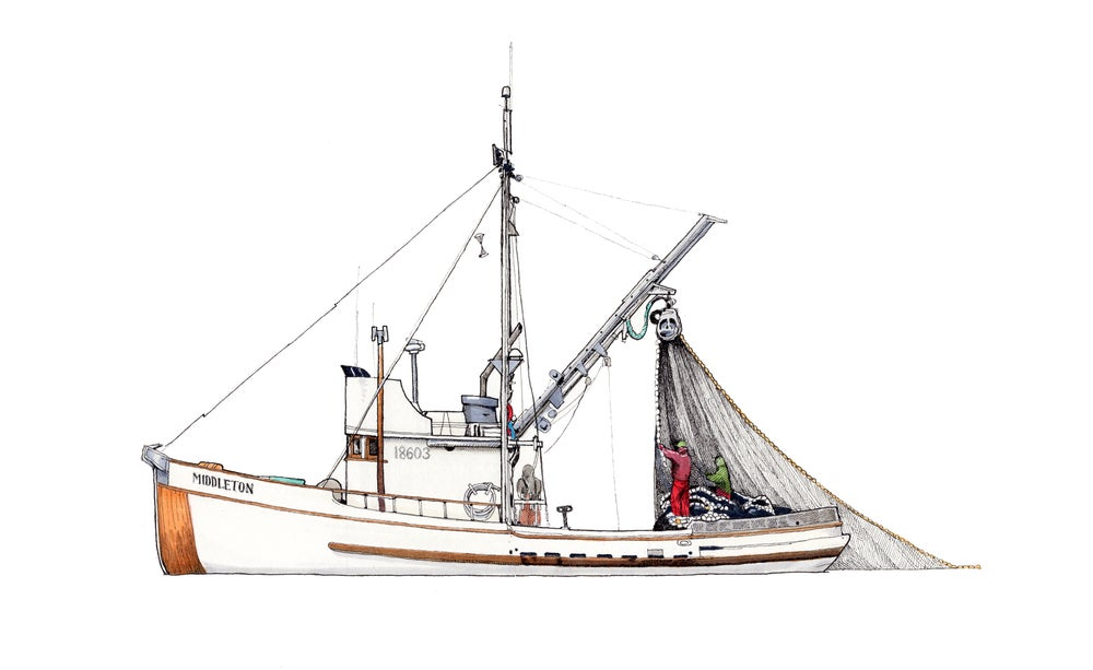 Image of F/V Middleton