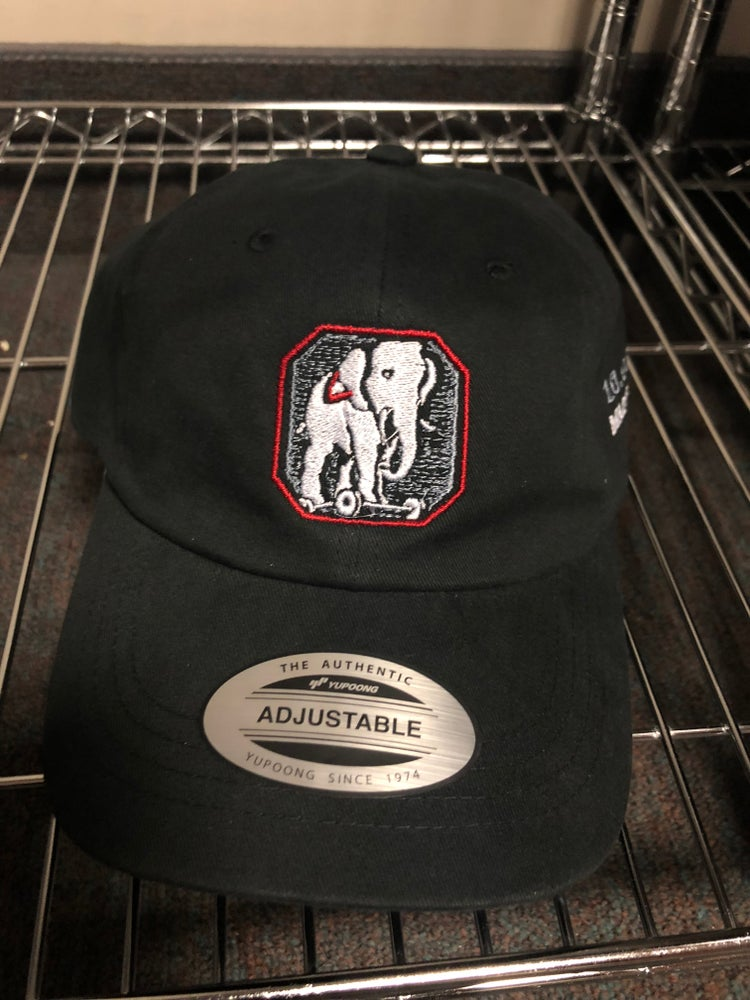 """Image of """"Blind Man's Zoo"""" Embroidered Hat"""