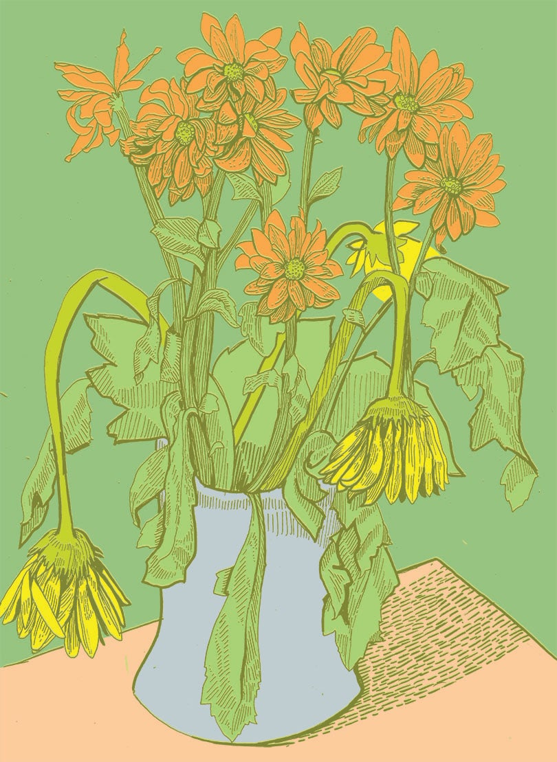 Image of A5 Flower Pot Print