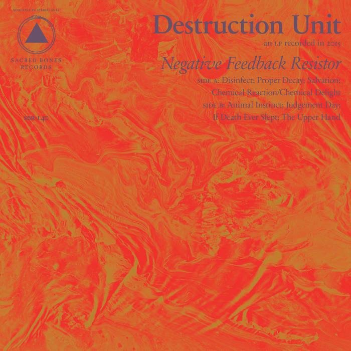 """Image of Destruction Unit """"Negative Feedback Resistor"""" CD"""