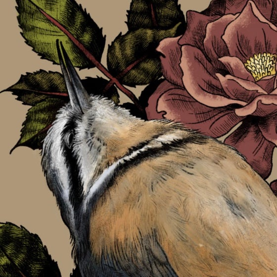 Image of Rest & Wild Roses Print