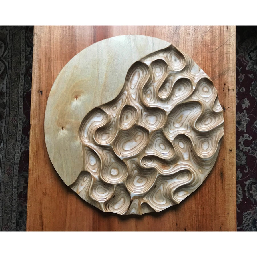 Image of Strange Tides. Ply carving