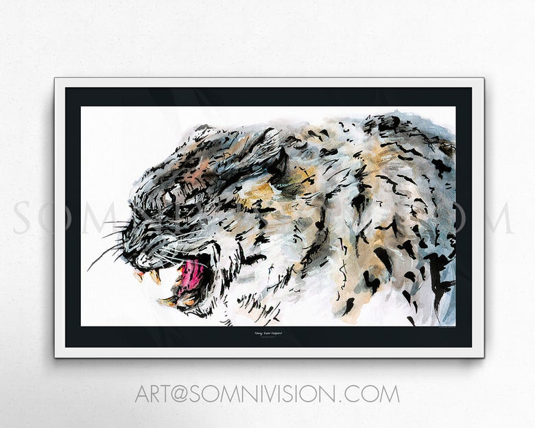 Image of Young Snow Leopard Art Print, giclée, poster, ink, watercolor, animal, wildlife, artwork