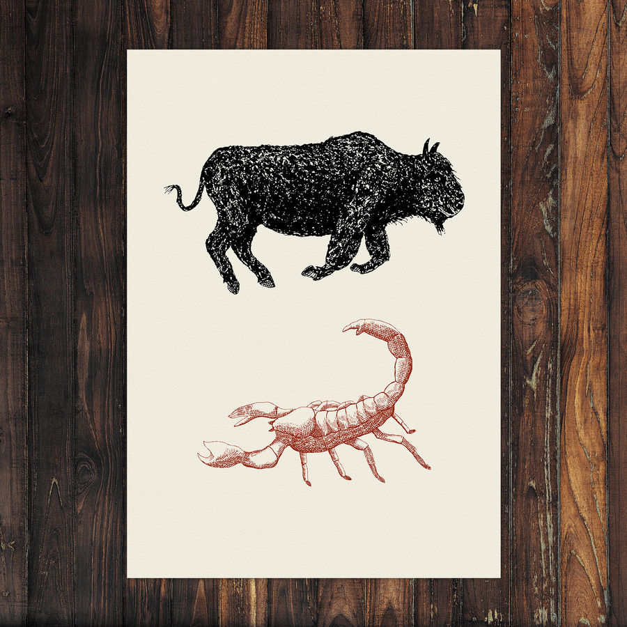 Image of Bison & Scorpion - A2
