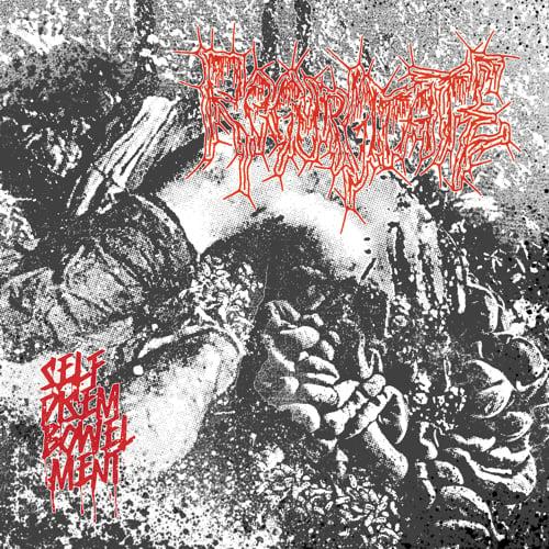 Image of REGURGITATE - SELFDISEMBOWELMENT CD