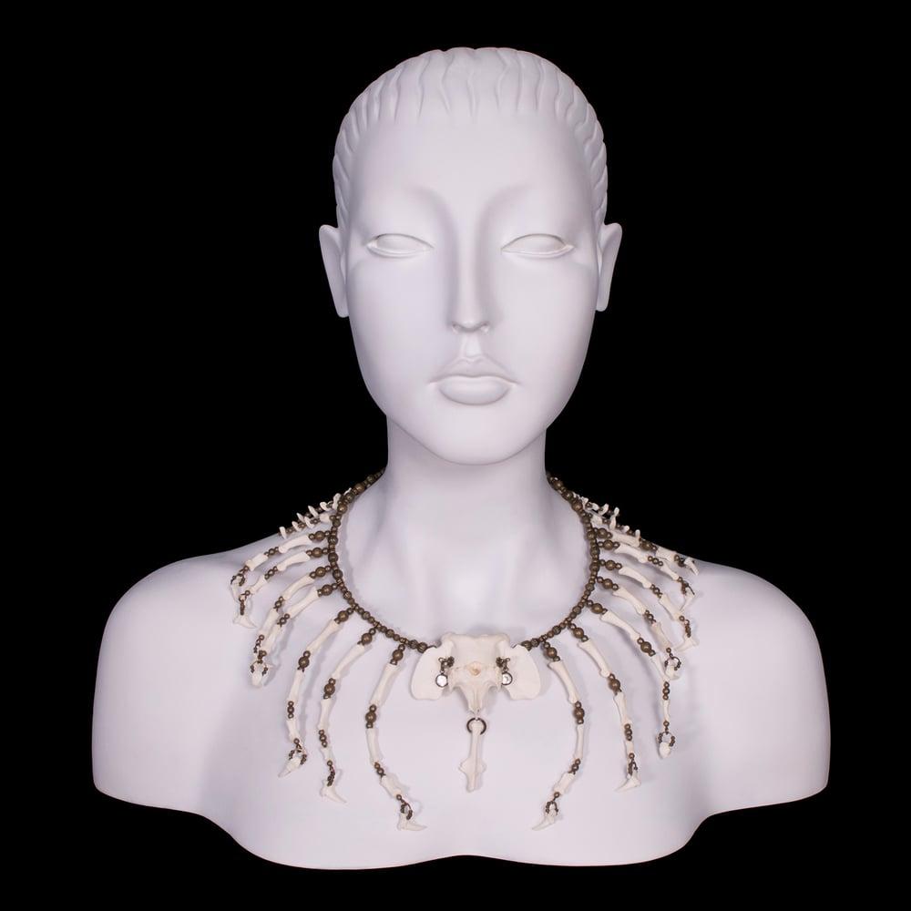 "Image of ""Kajot"" Coyote Bone Necklace"
