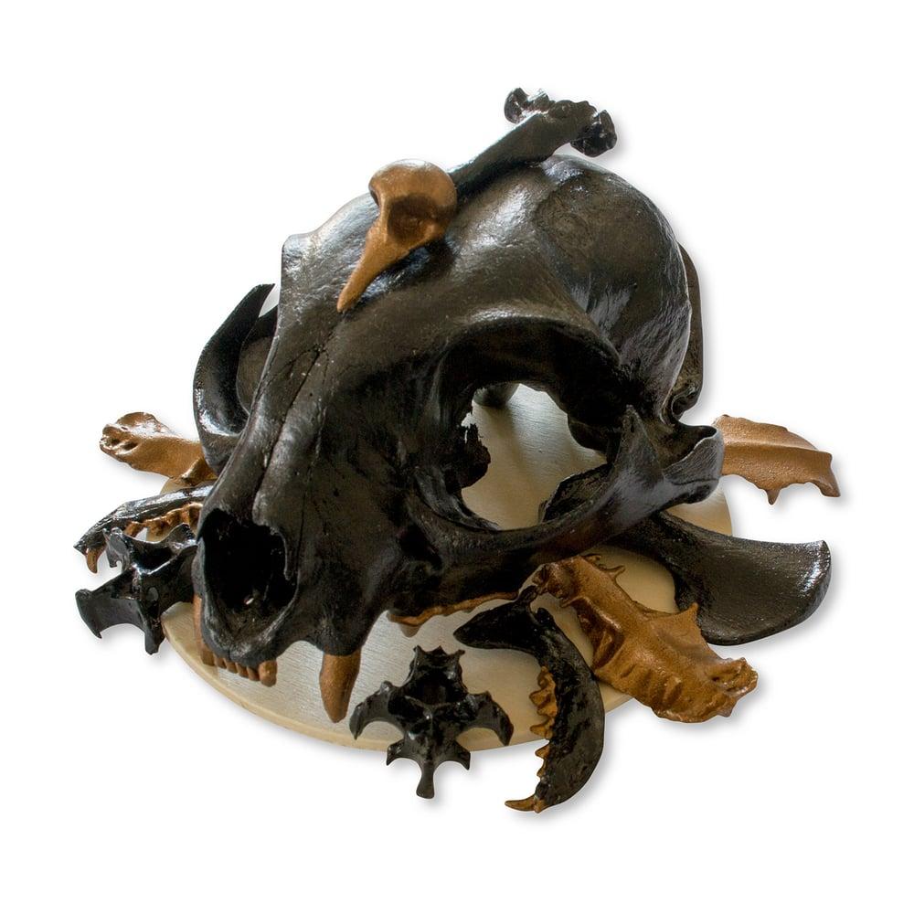 "Image of ""Luchs"" Black & Gold Bobcat Skull Sculpture"