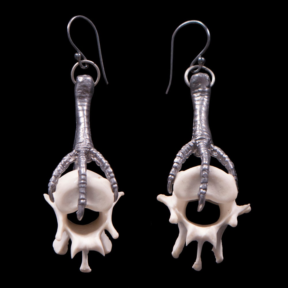 Image of Coyote Vertebrae and Pewter Dove Leg Earrings