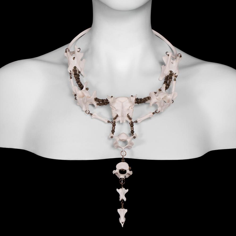 """Image of """"Kovinte"""" Coyote Bone Necklace"""