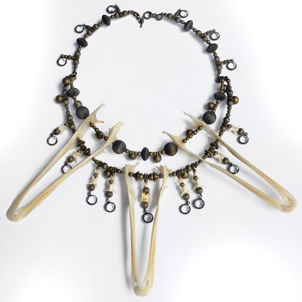 Image of Duck Mandible Necklace
