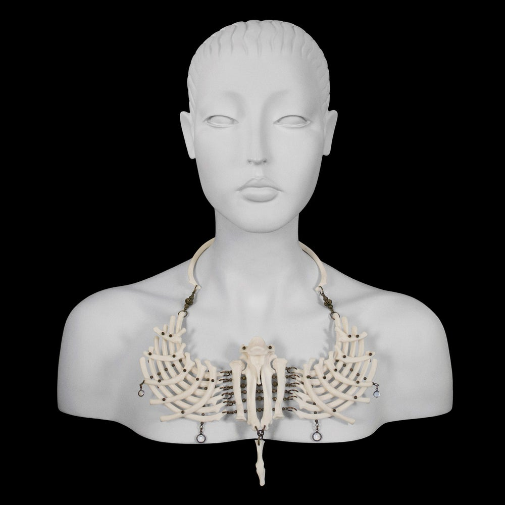 "Image of ""Malaje"" Otter Rib Bone Necklace"