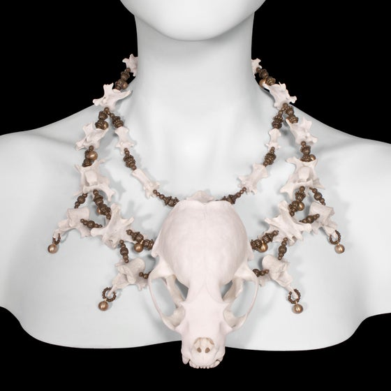 "Image of ""Vydra"" Otter Skull and Vertebrae Necklace"