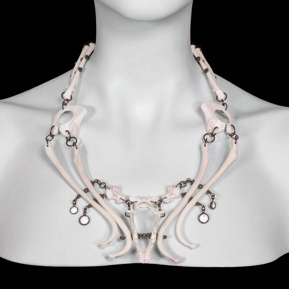 """Image of """"Anaka"""" Raccoon & Ferret Bone Necklace"""