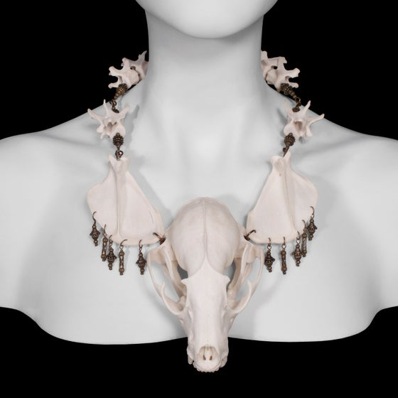 """Image of """"Myval"""" Raccoon Skull Necklace"""