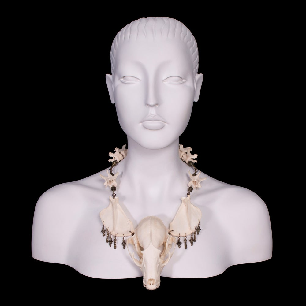 "Image of ""Myval"" Raccoon Skull Necklace"