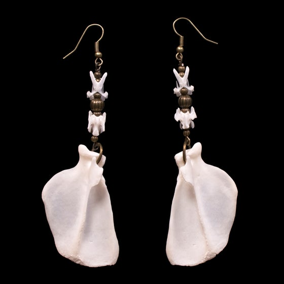 "Image of ""Khuren"" Skunk & Pigeon Bone Earrings"