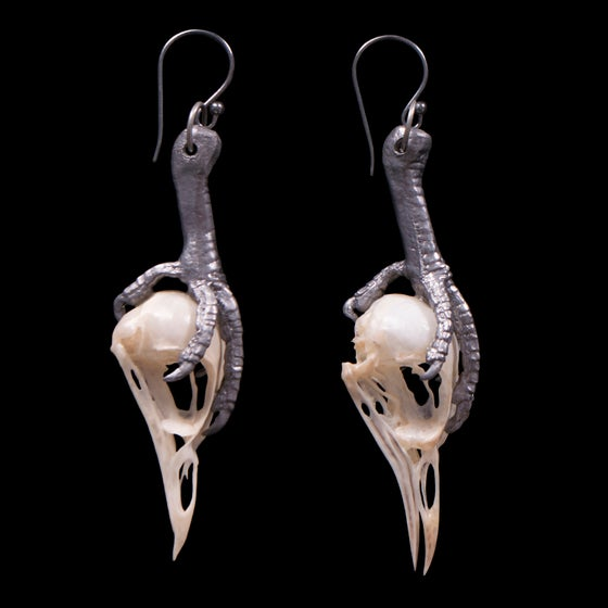 Image of Starling Skull and Pewter Dove Leg Earrings