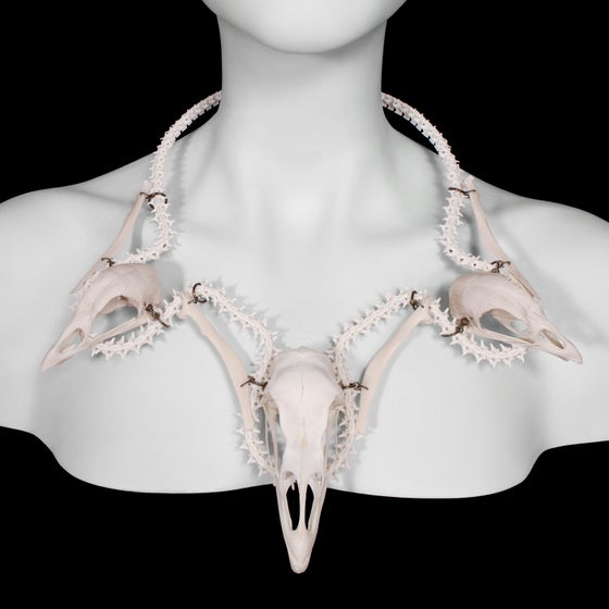 "Image of ""Kalkon"" Turkey & Chicken Skull Necklace"