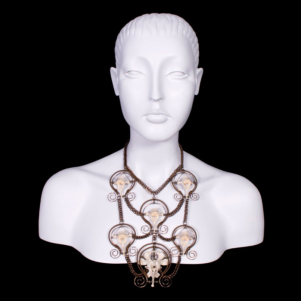 Image of Wire Wrapped Vertebrae Chain Maille Necklace