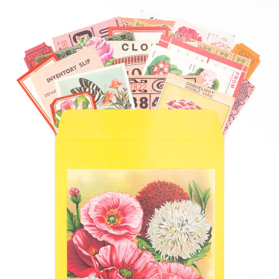 Image of Extra Large Seed Packet with Floral Ephemera
