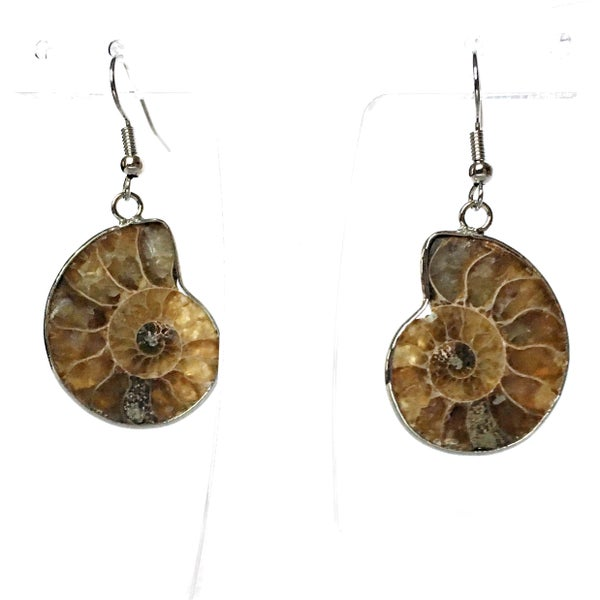 Image of Ammonite Cameo Earrings