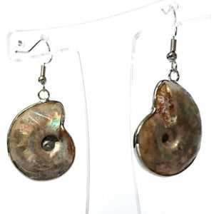 Image of Ammonite Cameo Earrings